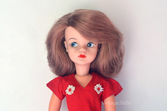 Sandy Side Parted (1968-1970) in Daisy Delight (1976) (vintage.dolls) Tags: sindy pedigree doll dolls collectible toys vintage 60s daisy delight 1976