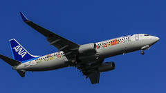 All Nippon Airways   ANA   Boeing737-881   JA85AN   Tokyo Haneda Airport (akg414p010) Tags: flowerjet ana nh allnipponairways   boeing 737800 b738 boeing737 737ng ja85an hnd tokyo rjtt hanedaairport tokyointernationalairport       japan canon eos7dmark ef70200mm