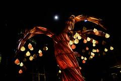 :Samara by Max Pagel & Jonathan Hwang, Starlight Alchemy (SG) (chengkiang) Tags: sgnightfest brasbasahbugis starlightalchemy armenianchurch singapore maxpagel sgnightfestival jonathanhuang nightfestival samara