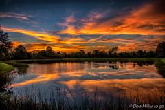 Florida Orange (DonMiller_ToGo) Tags: sunsetmadness sunsets nature reflections goldenhour d5500 lake florida hdr 3xp millerville onawalk sky sunsetsniper hdrphotography outdoors nik