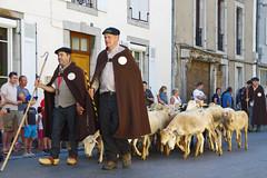 Autrefois le Couserans 2016 (PierreG_09) Tags: autrefoislecouserans arige saintgirons couserans fte tradition portrait troupeau brebis mouton berger