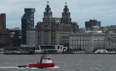Iguaz (frisiabonn) Tags: england great britain merseyside wirral river mersey ship water shore waterfront uk united kingdom marine vessel new brighton maritime boat liverpool iguazu iguaz dredger suction dredge city liver building port authority pierhead bird clock tower mercure hotel peel ports