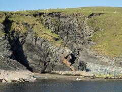Zodiac cruising around Fetlar (Nanooki ) Tags: scottishisles fetlar shetlandislands unitedkingdom gb