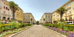 Place d'Aristote (Vincent Rowell) Tags: raw tonemapped hdr balkans2016 sigma816mm greece thessaloniki square aristotlesquare flowers macedoniagreece makedonia timeless macedonian