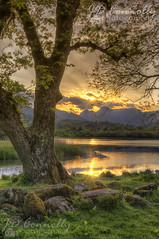 Last Light At Elterwater (Jason Connolly) Tags: hdr hdrphotography hdrpro hdrimage photomatix photomatixpro elterwater thelakedistrict thelakedistrictnationalpark thelakes lakedistrict lakelandlandscape cumbria cumbrianlandscape cumbriancountryside explore inexplore explored