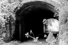 Tunnel (MCorrigan1983) Tags: jch400 streetpan 2016 bw dunhammassey jchstreepan400 nikkor50mmf14ais nikonfe2 tunnel