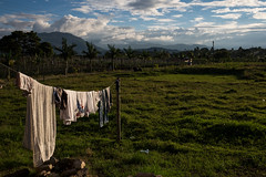 Drying in the sun (lvpz) Tags: outdoor landschaft feld grasland green drying rack sunset sky himmel cables palmtrees palmen mountains colombia