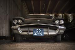 Dust Bunny (Jeroenc71) Tags: funfunfun beachboys tbird barnfind barn vintage car ford thunderbird dirty dusty 1960s 1950s