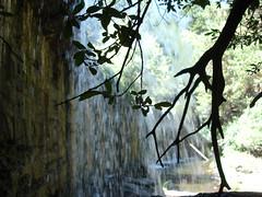 Contraluz en la presa. (margabel2010) Tags: cascadas cascada presas presa agua aguadulce ramas hojas madera cemento rboles flora sierra guadarrama airelibre solysombra contraluz contraluces estanque ro