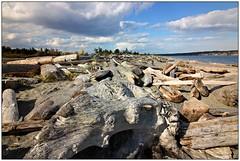 Log Beach (CanMan90) Tags: islandviewbeach beach logs ocean saanichpeninsula saanich sand clouds cans2s canon rebelt3i vancouverisland britishcolumbia seascape efs1018mmf4556isstm