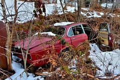 jaguar XJ6 4.2 (riccardo nassisi) Tags: auto abbandonata abandoned car wreck wrecked rust rusty relitto rottame ruggine epave jaguar range rover settetermini sette termini varese montegrino valtravaglia abbandono urbex de decay italy