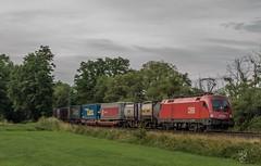 2403_2016_07_10_Haunetal_Unterhaun_BB_1116_068_TAURUS_mit_LKW_Walter_ARCESE_KV_DGS_98583_Rheinhausen_-_Curtice_(Sdl.) (ruhrpott.sprinter) Tags: ruhrpott sprinter deutschland germany nrw ruhrgebiet gelsenkirchen lokomotive locomotives eisenbahn railroad zug train rail reisezug passenger gter cargo freight fret diesel ellok hessen haunetal unterhaun db cancantus cfla dispo eloc mrcedispolok bb rhc railpoolrpool railservices sbbc txltxlogistik txla wlb wienerlokalbahnencargo 101 120 151 152 185 193 411 415 428 1266 es64u2 es64f4 ice r5 lokzug taurus eccorail anrufschranke outdoor logo natur graffiti