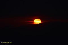 Fireball Sunset (FionaClarkPhotography) Tags: sunset sunsetting pretty fire fireball orange yellow red beautiful gorgeous amazing photography photographer copyright fionaclarkphotography d3200 dark scotland glasgow wow hills mountians