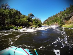 Rafting the Klamath River: Stage Line (Class III, Mile 5.9) (BLMOregon) Tags: rafting rapids raft pov klamath river wild scenic blm bureauoflandmanagement upperklamath recreation oregon klamathfalls stageline