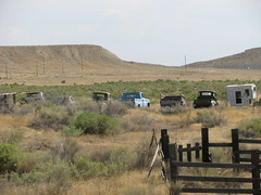 A Lineup of Abandoned Trucks (Eyellgeteven) Tags: rural abandoned forgotten decay dilapidated chevrolet chevy chev gm generalmotors generalmotorscorporation gmc pickup pickuptruck truck rust rusty rusted rustyandcrusty 1970s 1960s 1950s 1940s rundown farmtruck farm farming farmland fence fencing fencedin camper pickupbedtrailer trailer truckbed truckbedtrailer beatup beater jalopy junker dented dents dent white 12ton 34ton faded worktruck retired desert sagebrush field classic vintage vehicle americanmade madeinusa eyellgeteven oxidized oxidation outtopasture old