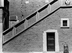 Man and Stair (Vadim.Cojuhov) Tags: man stairs zenit film pan ilford portrait street people photography great interesting wonderful life scene cinematic cinema moment see look exposure flickr black white another old live always never remember something time less more nocolor forever manual hellios focus mix photo poland krakow center tire rim new noise noize nice advertising movie love vista vintage hands global fantastic facelif texture work quiet wonder cute mystic eyes telefilm action outdoor outside knight hero amazing