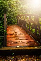 Early Morning Bridge (Woodmizer62) Tags: park morning bridge civicpark ofallon missouri outdoors