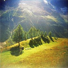 blatten (thomasw.) Tags: blatten ltschental wallis valais schweiz switzerland suiza suisse alpen alps europe europa travel sommer analog cross crossed holga expired 120