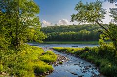 Near Fall Brook Falls (Debajyoti M) Tags: newbrunswick naturalcolours nature nikond5100 nbphoto nikon autofocus canada d5100 flickrlover flickrlovers landscape outdoor riverside river summer water wow