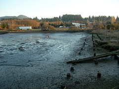 """Padden Lagoon Empty • <a style=""""font-size:0.8em;"""" href=""""http://www.flickr.com/photos/59137086@N08/7885379474/"""" target=""""_blank"""">View on Flickr</a>"""