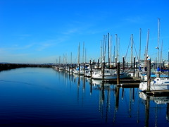 """Line of boats in Bellingham Harbor • <a style=""""font-size:0.8em;"""" href=""""http://www.flickr.com/photos/59137086@N08/7885381090/"""" target=""""_blank"""">View on Flickr</a>"""