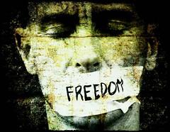 freedom-of-speech1 (Jacob Lageveen) Tags: pictures images amnesty geertwilders davidrockefeller ustank fitna kimdotcom jacoblageveen erwinlensink