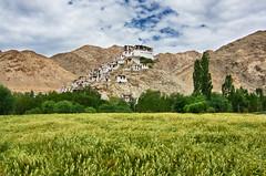Chemrey Monastery (Souvik_Prometure) Tags: india asia buddhist buddhism leh hdr ladakh jammukashmir jammuandkashmir abigfave flickrdiamond tokina1116mmf28 chemreygompa tokina11mm16mmf28 nikond7000 chemreymonastery souvikbhattacharya hdreffexpro