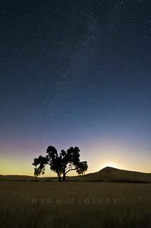 Palouse Moon Rise