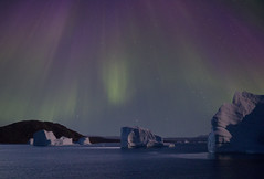 Northern lights, Greenland. (richard.mcmanus.) Tags: night arctic explore greenland icebergs northernlights auroraborealis mcmanus eastgreenland
