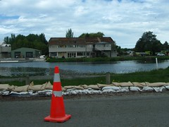 Across the Avon River from Locksley Avenue (christineNZ63.2012) Tags: christchurch demolish canon river earthquake union canterbury powershot damage rowing reach aotearoa avon kerrs avonside a580 kerrsreach canterburyrowing