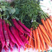 Radishes and carrots