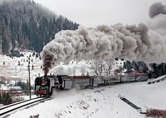 SD 556 036 (maurizio messa) Tags: railroad railway trains steam slovensko bahn slowakei mau tatra ferrovia treni dampf slovacchia vapore nikond90 sd trenospeciale 556036 teamlorie eskoslovensksttndrhy