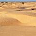 Tunisia-3694 - One BIG Sandbox........