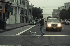 Walkin The Dog (ZanderVision) Tags: sanfrancisco street dog canon downtown foggy streetphotography streetscene 30d walkingthedog cityside