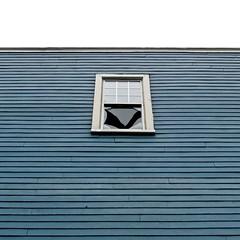 broken window on blue wall (Mr.  Mark) Tags: blue broken window glass up wall photo stock perspective cracked markboucher