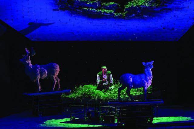 Stefan Vinke as Siegfried in Siegfried © Clive Barda / ROH 2012