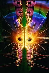 35mm Fire & Light Mask 265 (tackyshack) Tags: light lightpainting reflection film 35mm painting pond mask spin led lp paintingwithlight dlw lightpainter nikonn65 romancandle lightphotography woolspinning lightjunkie megawand tackyshack woolspin tackymask digitallightwand ©jeremyjackson