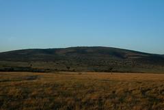 Maasai Mara (Knoffelhuisie Photography.) Tags: kenya kenia masaimara elementsorganizer