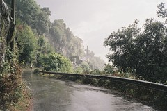 (Aage Drake) Tags: road autumn italy mountain wet rain shower nemi contaxt2 fujisuperia200
