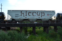 Hiccup (huntingtherare) Tags: freight train graffiti bench benching hiccup bridge trestle