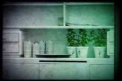 4+3 still life sketch (kazimierz.pietruszewski) Tags: stilllife border white green plants dresser drawers shelves