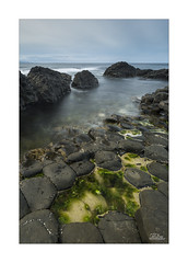 The Giant's Causeway (JRTurnerPhotography) Tags: jaketurner jrturnerphotography canon canon5dmarkiii canon1635mmf4l wideanglelens leefilters leelandscapepolariser landscapepolariser cpl polariser picture print image photo photograph photography photographer rockpool basaltcolumns basalt seaweed water waterpool tidalpool giantscauseway countyantrim northernireland ireland unitedkingdom britishisles europe travel travelling travelphotography holiday vacation landscape landscapephotography seaside coast nationaltrust antrimcoast causewaycoast atlanticocean