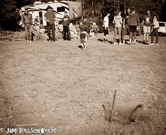 Family Camping (cuddleupcrafts) Tags: horseshoes family camping dirt dog photography image