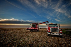 Case IH Combine (StevanBaird) Tags: gildersleeve corn fall farm harvest september combine farmer grain graintruck caseih