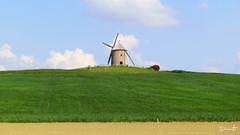 The Windmill (Dinarte Frana) Tags: molino windmill normandi francia france landscape cielo azul verde green blue countryside campia paisaje