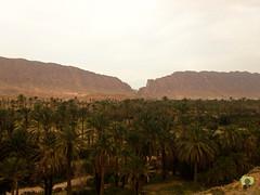 La brche d'El-Kantara, la porte du Sud (Ath Salem) Tags: algrie paysage tourisme dcouverte    biskra sidi okba kantara palmeraie dattes brche montagne beaut rare porte sahara