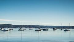 Saratoga Waterscape (Merrillie) Tags: nsw brisbanewater landscape saratoga centralcoastnsw boats davistown australia bay nature waterscape nswcentralcoast centralcoast newsouthwales sea