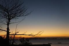 arvore (Mariporaii Fotografia) Tags: arvore sunset summer sky blue green sombra vero inverno mar mariporaiifotografia manguinhos mato sol sun barcos