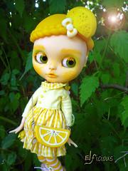 Lemon comes with me to BCEU (FA)