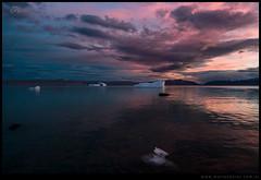 Crepusculo lago Argentino tempanos